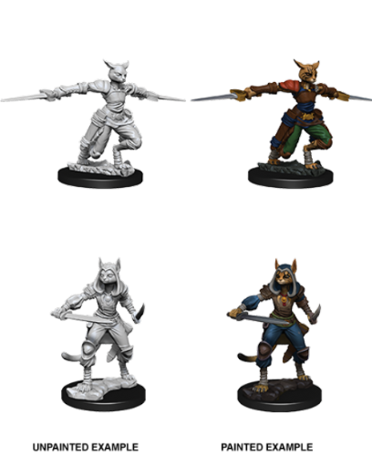 Female Tabaxi Rogue: D&D Nolzur's Marvelous Miniatures